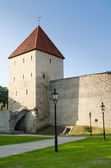 Park at medieval towers of Tallinn — Stockfoto