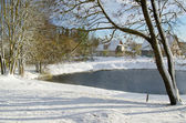 Jesień krajobraz ze śniegiem przez staw w wiejskich — Zdjęcie stockowe
