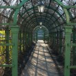 Stock Photo: Green pergola in a park in spring, close up