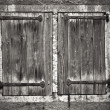 Old window shutters, a black and white photo — Stock Photo