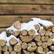 Birch fire wood at a wall of the house in winter — Stock Photo