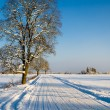 Winter landscape with road to a countryside — Stock Photo