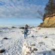Woman with a dog walk on a sunny winter day on the coast of the — Stock Photo