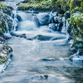 Small creek with a waterfall close up — Stock Photo