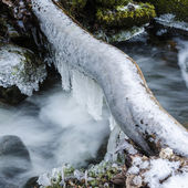 Frozen icicles on water flow — Stock fotografie