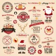 Christmas set — Vector de stock  #15895563