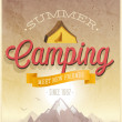 Summer Camping poster. — Stock Vector #47659847