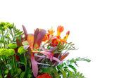 Bouquet colorato di fiori vari — Foto Stock