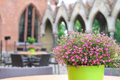 Flowers on the tables cafe in the castle Heeswijk. Netherlands — Stock Photo