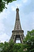 Trees in a park near Eiffel Tower. Paris. France — Stock Photo