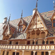Famous hospice in Beaune. France, Burgundy — Stock Photo #13953956