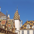 Famous hospice in Beaune. France, Burgundy — Stock Photo #13953958