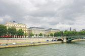 Seine vallen i paris. frankrike — Stockfoto