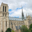 Notre Dame de Paris. France — Stock Photo #16830243