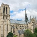 Notre Dame de Paris. France — Stock Photo #16830243