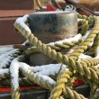 Mooring rope for pier bollards — Stock Photo