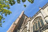 Grote kerk kirche, die hauptattraktion von dordrecht — Stockfoto