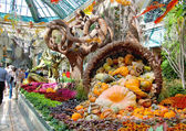 Autumn theme in a greenhouse at Bellagio Hotel in Las Vegas — Stock Photo