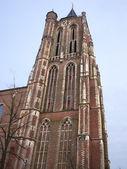 在 gorinchem 中的老教堂塔楼。荷兰 — 图库照片