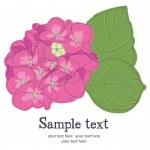 Flowers card — Stock Vector