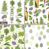 Insieme di erbe e spezie — Vettoriale Stock