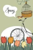 Spring garden, tulips and bike, design card — Stock Vector