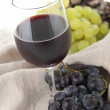 Red wine and grapes — Stock Photo