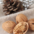 Walnut — Stock Photo #12745177