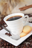 Coffee cup and biscuit — Stock Photo