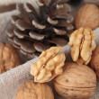 Stock Photo: Walnut