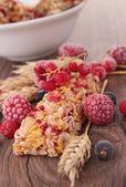 Granola bar and berries — Stock Photo