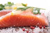 Ingrédient et saumon cru — Photo