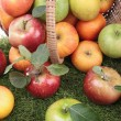 Apples — Stock Photo #13828478