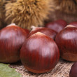 Chestnut — Stock Photo #13865941
