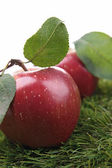 Red apple and leaf — Stock Photo