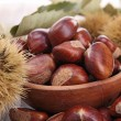 Chestnut — Stock Photo #13939318