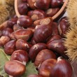 Chestnut — Stock Photo #13942161