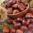 Chestnut — Stock Photo #14108221