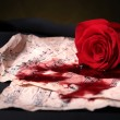 Stock Photo: Red rose,score and blood