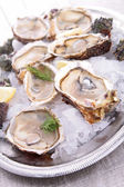 Oyster served in ice — Stock Photo