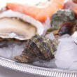 Seafood platter — Stock Photo #14869705