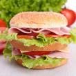 Hamburger — Stock Photo #15659407