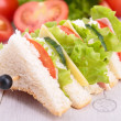 Club sandwich — Stock Photo #15659785