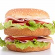 Hamburger — Stock Photo #16284623