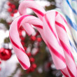 Candy cane — Stock Photo #16411099