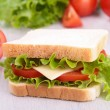 Fresh sandwich — Stock Photo #16420365