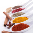 Assortment of spices — Stock Photo #16980331