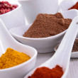 Assortment of spices — Stock Photo