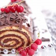 Chocolate swiss roll — Stock Photo #17132959