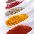Assortment of spices — Stock Photo #17133271